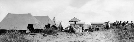 Thesiger's camp at Awash Station