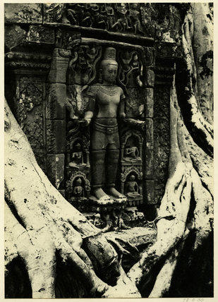 Reliefs at Angkor