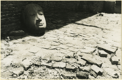 Stone head of the Buddha