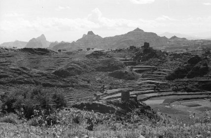 View of terraced fields in ...