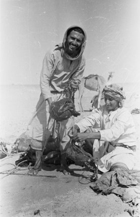 Portrait of two Bedouin men ...
