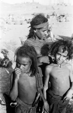 Group portrait of three Bedouin ...