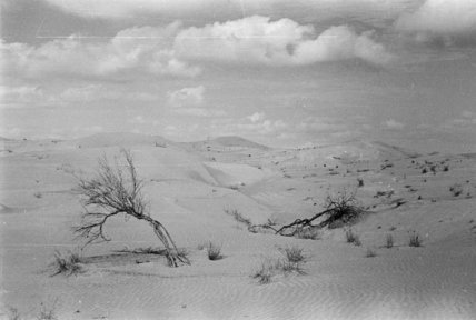 View of desert landscape in ...