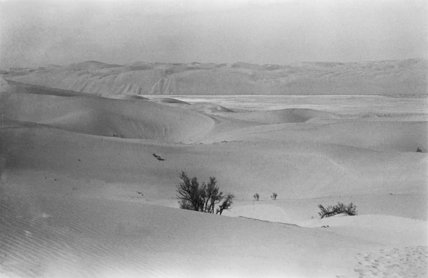 View of rolling sand dunes ...