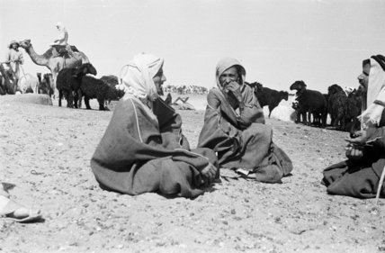 Seated portrait of three Utaybah ...