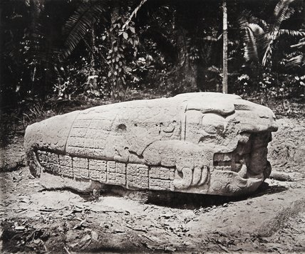 Stone carving (Zoomorph G) at Maya site of Quirigua, Guatemala