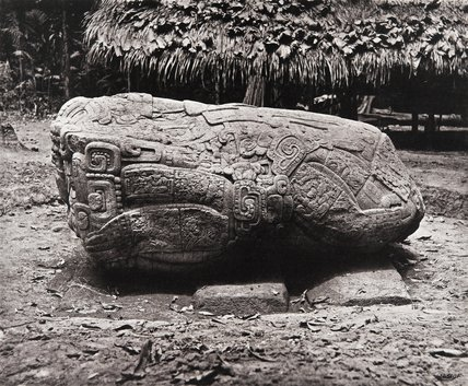 Stone carving (Zoomorph B) at Maya site of Quirigua, Guatemala