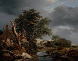 Landscape with a Blasted Tree, by Jacob van Ruisdael