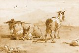 Two donkeys and a goat in a landscape, by Tiepolo