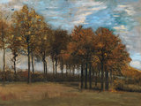 Autumn Landscape, by van Gogh