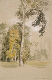 Study of Trees, by John Linnell