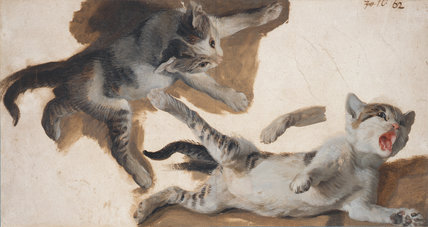 Sketches of a kitten, by Alexandre Francois Desportes