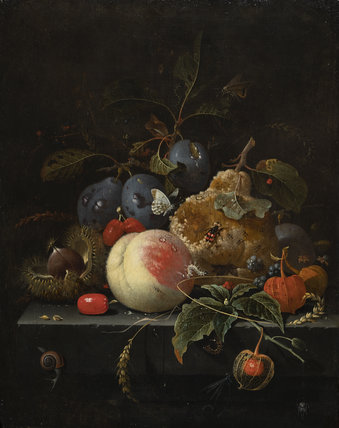 Fruit and nuts on a stone ledge