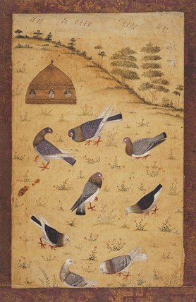 Eight pigeons and a pigeon-cote on a hill, Mogul School
