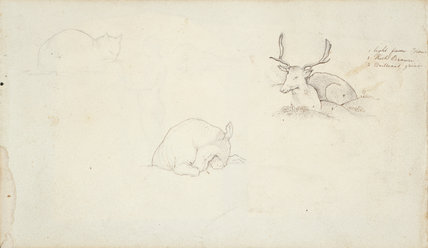 Studies of animals, by Samuel Palmer from a sketchbook