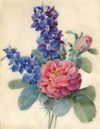 Flowers, Roses and Larkspur, by Camille de Chantereine