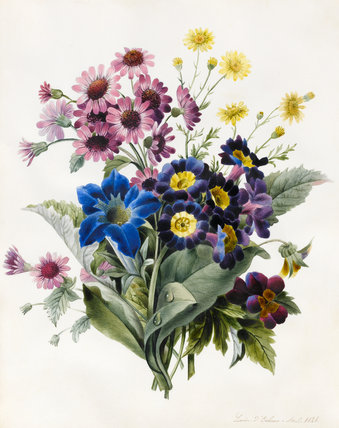 Mixed flowers, by Louise d'Orleans