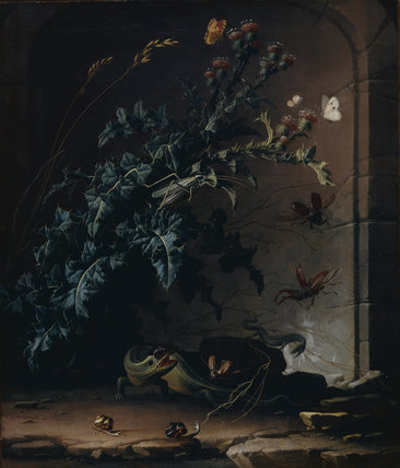 Stone niche with thistle, lizard and insects, by van den Broeck