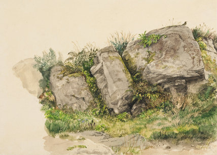 A landscape study of rocks and grasses, by William Dyce