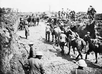 Pack mules carrying artillery shells near Pilckem on 3 August 1917 during the Third Battle of Ypres.