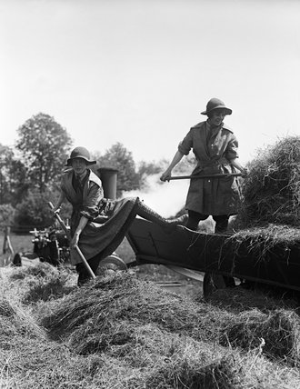 Members of the Women's Land Army Forage Corps feed a hay baler on a British farm during the First World War.