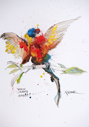 Nextinction - Rainbow Lorikeet