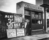A cat and dogs meat shop: 1935