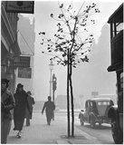 Fog at Cambridge Circus, Charing Cross Road. c.1935