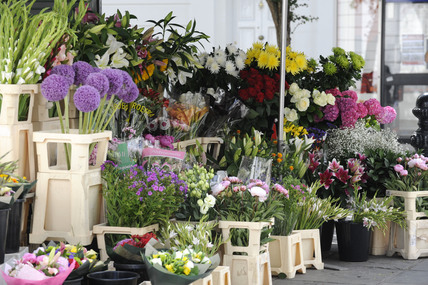 A Chelsea Flower Stall; 2009