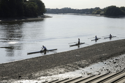 People rowing on the Thames near Richmond; 2009