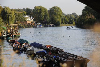 The River Thames at Richmond: 2009