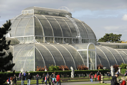 The Palm House Kew Gardens; 2009