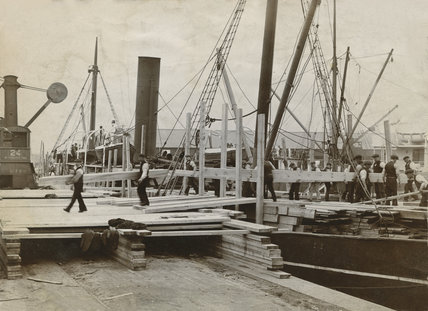 Dock Traders discharging a timber vessel; c1920's