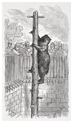 The bear pit - Zoological Gardens: 1872