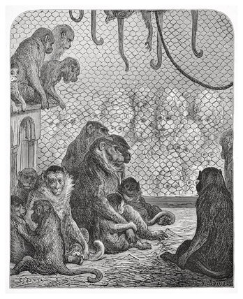 Zoological Gardens - the monkey house: 1872