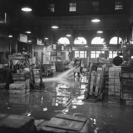 The Trading Floor at Billingsgate Market: 1958
