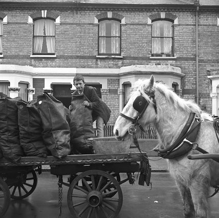 Horse and cart coal delivery. c.1955