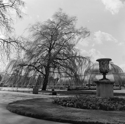 The Royal Botanical Gardens Kew; 1963
