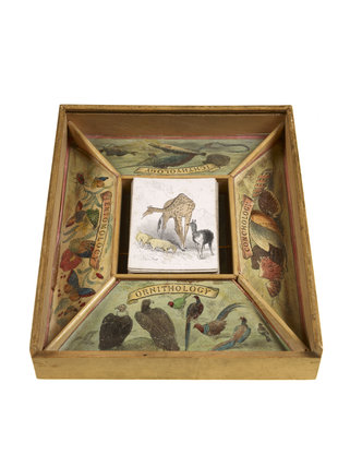 The Young Naturalist game; c.1860
