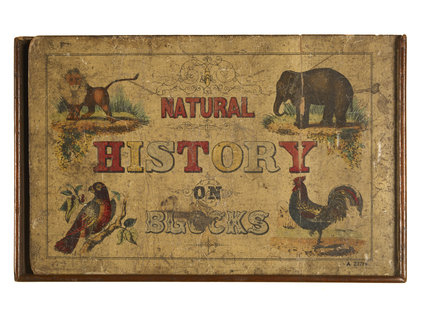 Natural history on blocks; c.1850