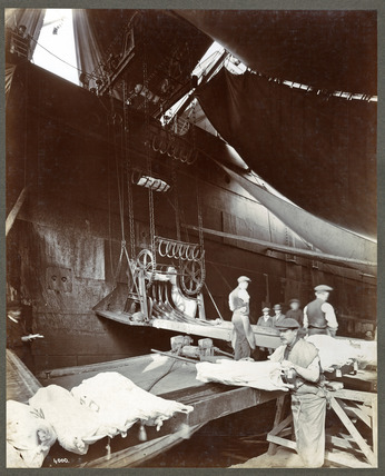 Unloading meat from a ship: 20th century