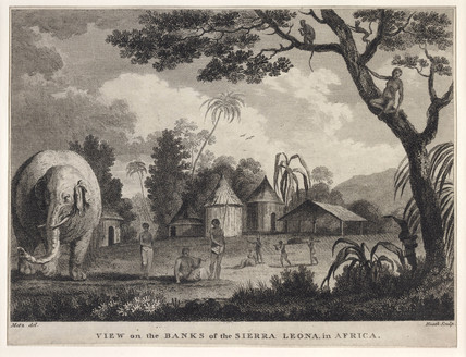 View on the Banks of the Sierra Leone in Africa: 18th- 19th century