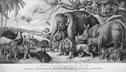 Royal Menagerie, Exeter Change, Strand, London: 1813