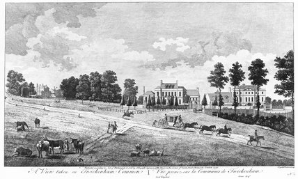 A view taken on Twickenham Common: 1753