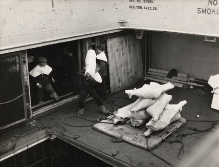 Dockers handling refrigerated meat: 1958