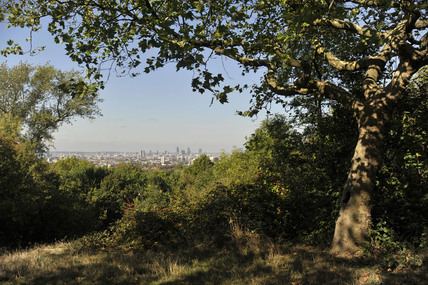 View across London from One Tree Hill; 2009