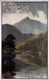 'Holidays in North Wales', LNWR poster, early 20th century.