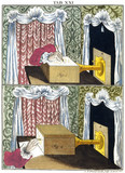 Using a camera obscura to draw insects, 1776.