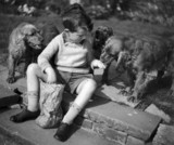 Young boy feeding three cocker spaniels, c