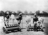Sowing with drills, Allahabad, India, 1877.